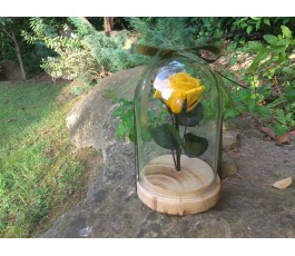 Rosa Preservada Amarilla -...