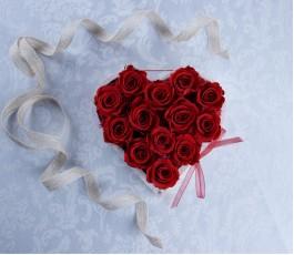 Caja Rosas Eternas Rojas -...