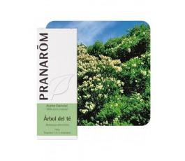 Aceite Esencial Árbol del...