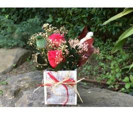 Centro Rosas eternas: Día...