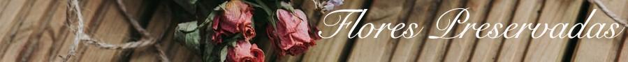 Rosas y Flores Preservadas