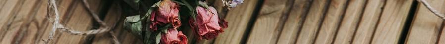 San Valentín | Flores Preservadas | Regalos Originales Naturales