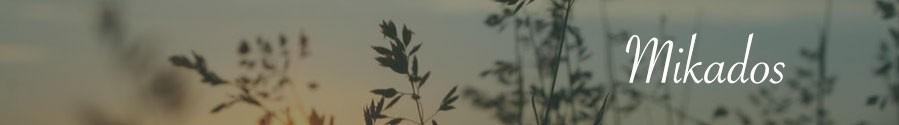 Ambientadores & Mikados