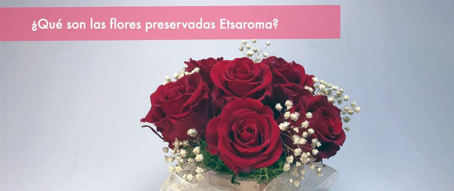 rosas eternas etsaroma